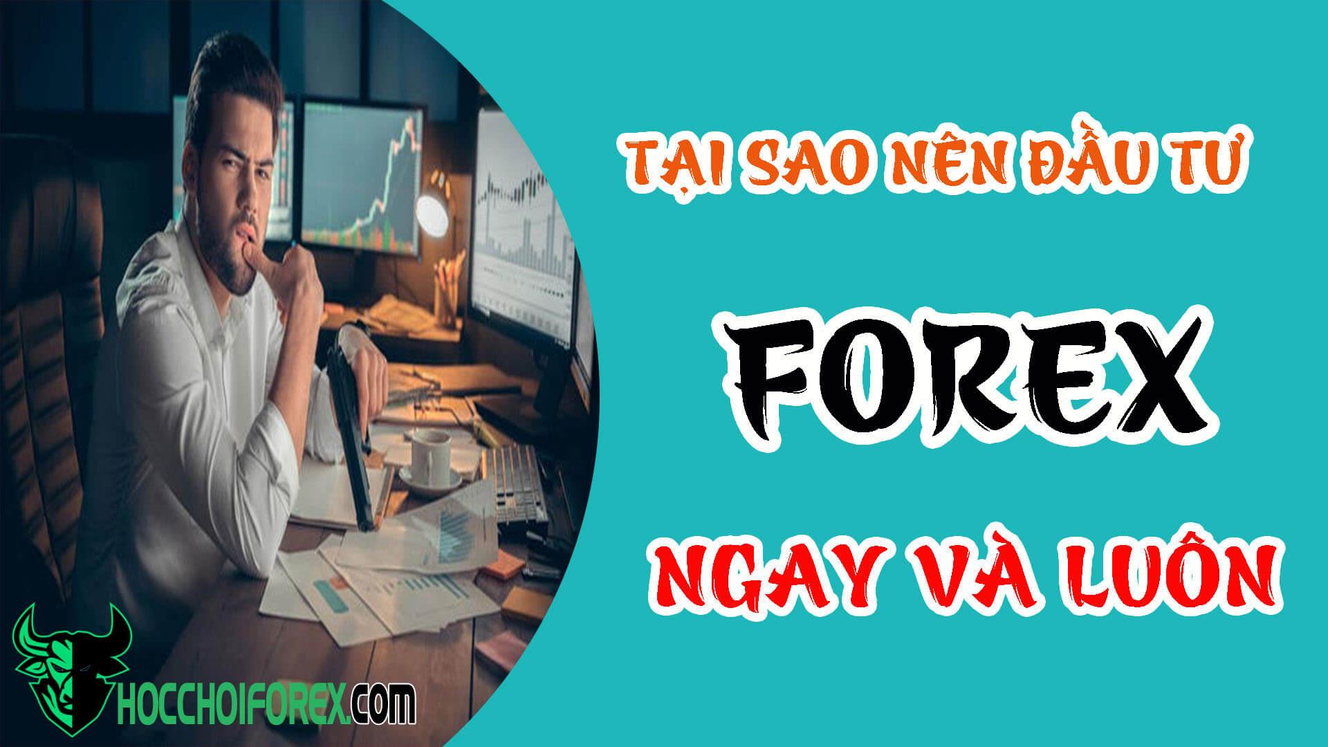 Ở Việt Nam có nên đầu tư forex không và nên đầu tư như thế nào