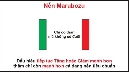 Hình nến Marubozu