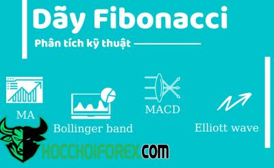Tìm hiểu dãy Fibonacci là gì và cách sử dụng của nó